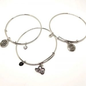 Silver Coloured Bangle Set